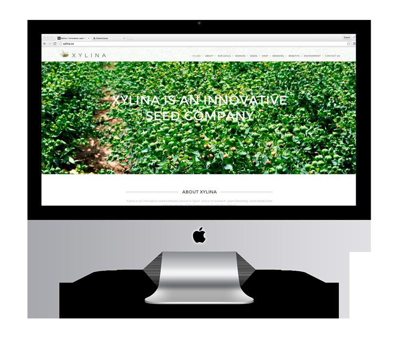 KUINI Estudio de diseño gráfico Alicante se encarga de Xylina Diseño Web y cuenta con nuestro apoyo para desarrollar su Web e identidad corporativa.